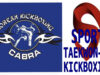 New  Zoom  KKC Kickboxing and TaeKwon-Do Intermediate to advanced  workout  class with Instructor Darren Doherty